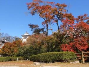 備中松山城と紅葉